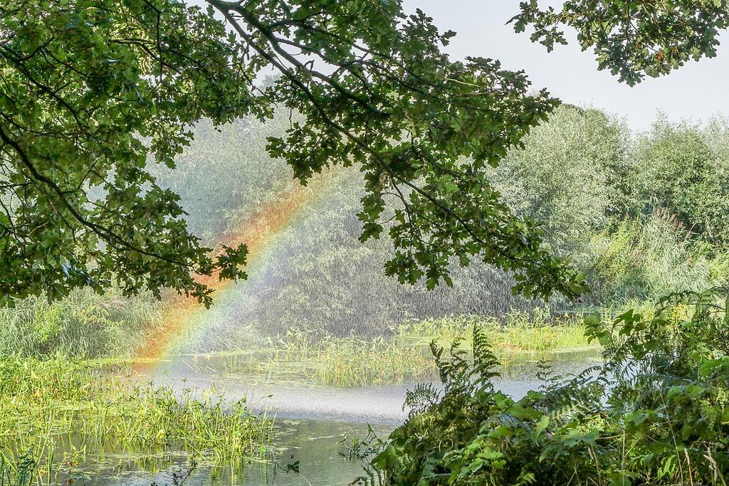 regenboog-bij-de-OWD